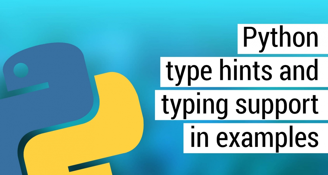 Python type hints and typing support in examples